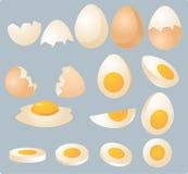 Eggs Abbildung Stockbilder