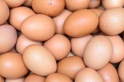 Eggs a abundância crua para o fundo Foto de Stock Royalty Free