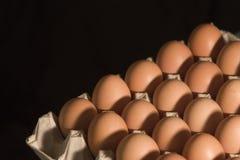 Eggs&black Immagine Stock