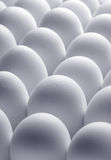 Eggs background Stock Image