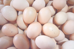 Eggs. Background of fresh eggs for sale at a market Stock Image