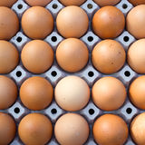Eggs background Stock Photo