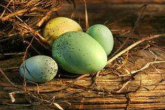 Eggs in the barn Royalty Free Stock Image