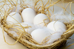Eggs in basket. Six eggs in basket with straw Stock Image