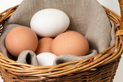 Eggs in a basket Royalty Free Stock Images