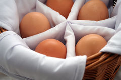 Eggs in basket. Five eggs in a basket, each one separated from another royalty free stock photography