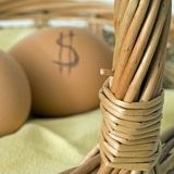 Eggs in Basket. Brown eggs with dollar signs. Don't put all your financial eggs in one basket stock photography