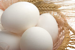 Eggs in the basket. White eggs in the basket. Camera Pentax k10d kit. Two light source Stock Photo