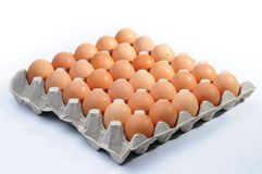 Eggs in a basket. A over white background stock images