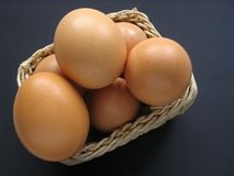 Eggs in Basket. Basket of chicken eggs stock image