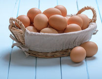 Eggs in a basket Stock Images