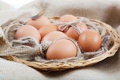 Eggs in a basket. Stock Photos