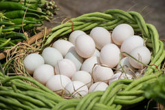 Eggs in basket. Stock Photo