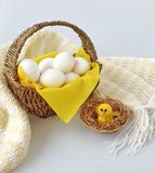Eggs basket. Easter farm farmlife egg chicken Royalty Free Stock Photo