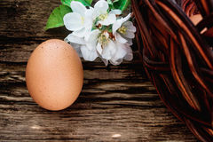 Eggs and basket royalty free stock photos