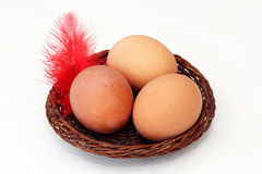 Eggs in a basket and feather. Three eggs in a basket and a feather Stock Photo