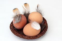 Eggs in a basket and feather. Three eggs in a basket and a feather Royalty Free Stock Photos