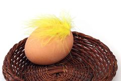 Eggs in a basket and feather. Three eggs in a basket and a feather Royalty Free Stock Image