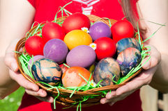 Eggs basket Stock Photography
