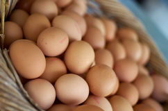 Eggs in the basket. Fresh chicken eggs in a basket for sale at the local market stock images