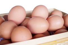 Eggs in the basket on isolate white background. There are fresh eggs from farm. Eggs in wooden basket stock images