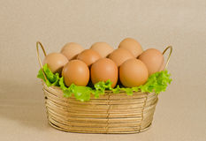 The Eggs Stock Image