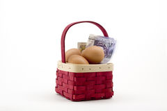 Eggs in basket with money Royalty Free Stock Photography