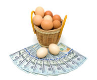 Eggs in a basket and money isolated on white background Royalty Free Stock Photos