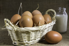 Eggs in a Basket with a small bottle of milk. A Still Life with a basket of eggs placed on straw, with a bottle of milk in the background on a hessian base Royalty Free Stock Images