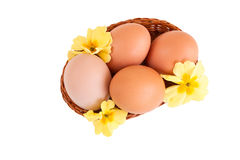 Eggs in a basket with spring flowers, isolated Stock Images