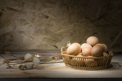 Eggs in the basket. Stock Photos