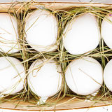Eggs in the basket with the straw. White eggs in the basket with the straw Stock Photo