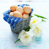 Eggs in a basket and a tulip flower Stock Images