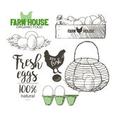 Eggs in basket. Eggs in the vintage antique-french-country wire egg gathering basket vector illustration