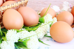 Eggs in the basket. On wallpaper background Royalty Free Stock Photos