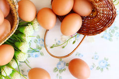 Eggs in the basket. On wallpaper background Royalty Free Stock Image