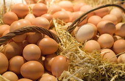 Eggs in baskets Stock Photography