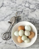 Eggs and Beaters Royalty Free Stock Photography