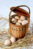 Eggs on the bed of straw Royalty Free Stock Image