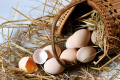 Eggs on the bed of straw Stock Photography