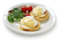 Free Eggs Benedict Stock Photo - 16703900