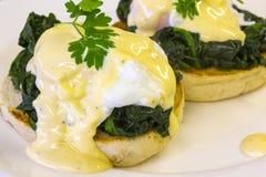 Eggs Benedict florentino Imagens de Stock