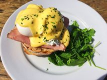 Eggs benedict served in the sunshine royalty free stock image