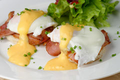 Eggs Benedict- toasted English muffins Stock Photos