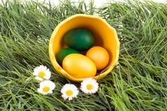 Eggs in big eggshell. Stock Image