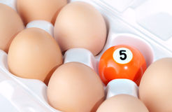 Eggs and billiards ball. In box Stock Photography