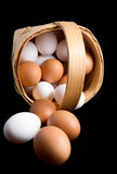 Eggs in a birch bark basket. On black background Royalty Free Stock Image