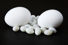 Eggs with Black Background stock photography