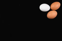 Eggs on black background. Three eggs on black background, top view Stock Photos