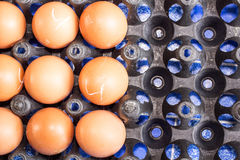 Eggs. In the black basket Royalty Free Stock Photo